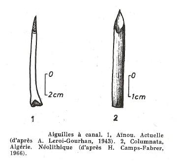 LES DIFFÉRENTS TYPES D'AIGUILLES PALÉOLITHIQUES. Aiguil16