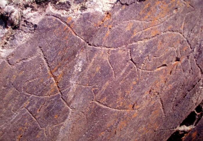 Les supports de l'expression artistique paléolithique. Cya10