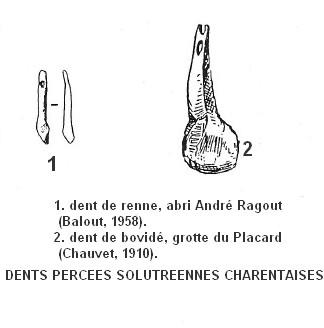 4.1.1. LES OBJETS NATURELS UTILISÉS EN PARURE. Dents-10