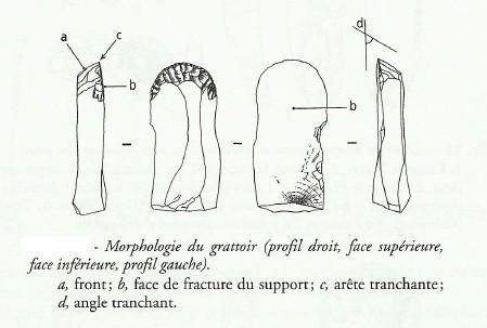LE TRAVAIL DES PEAUX AU PALÉOLITHIQUE SUPÉRIEUR. Gratto14