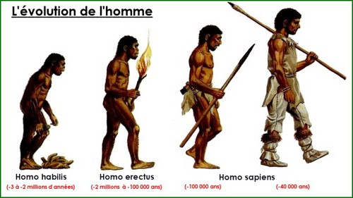 ► CHRONOLOGIES ◄ Hommes11