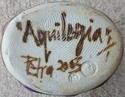 Dartington Pottery - Page 5 P1000817