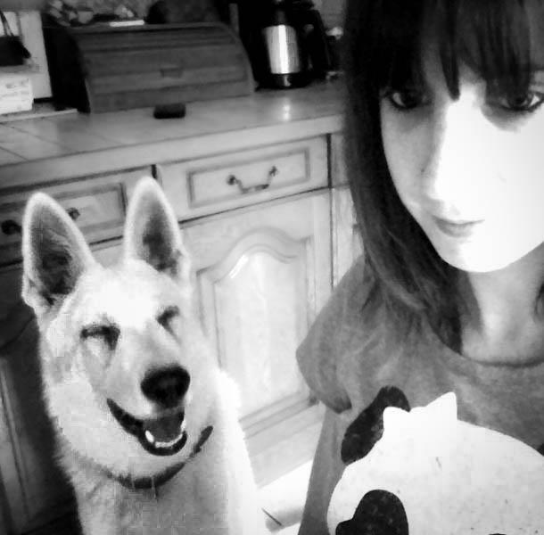 Grimaces de chien Webcam10