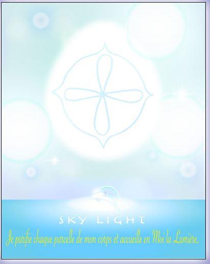 L'oracle des Maîtres Dauphins Sky10