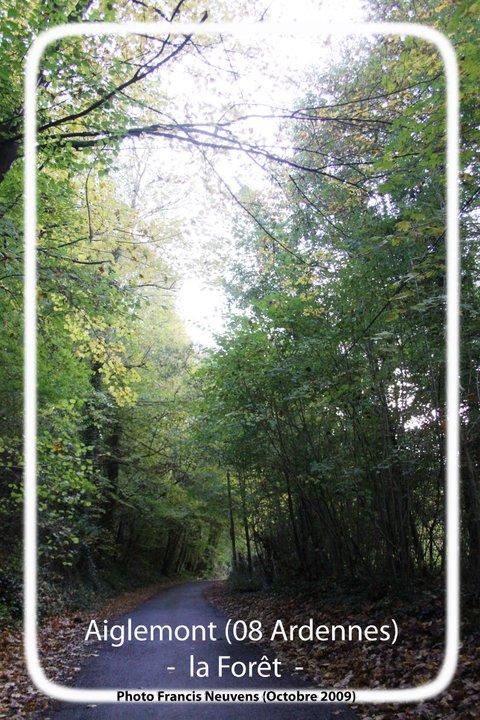 Aiglemont et sa forêt 15029710