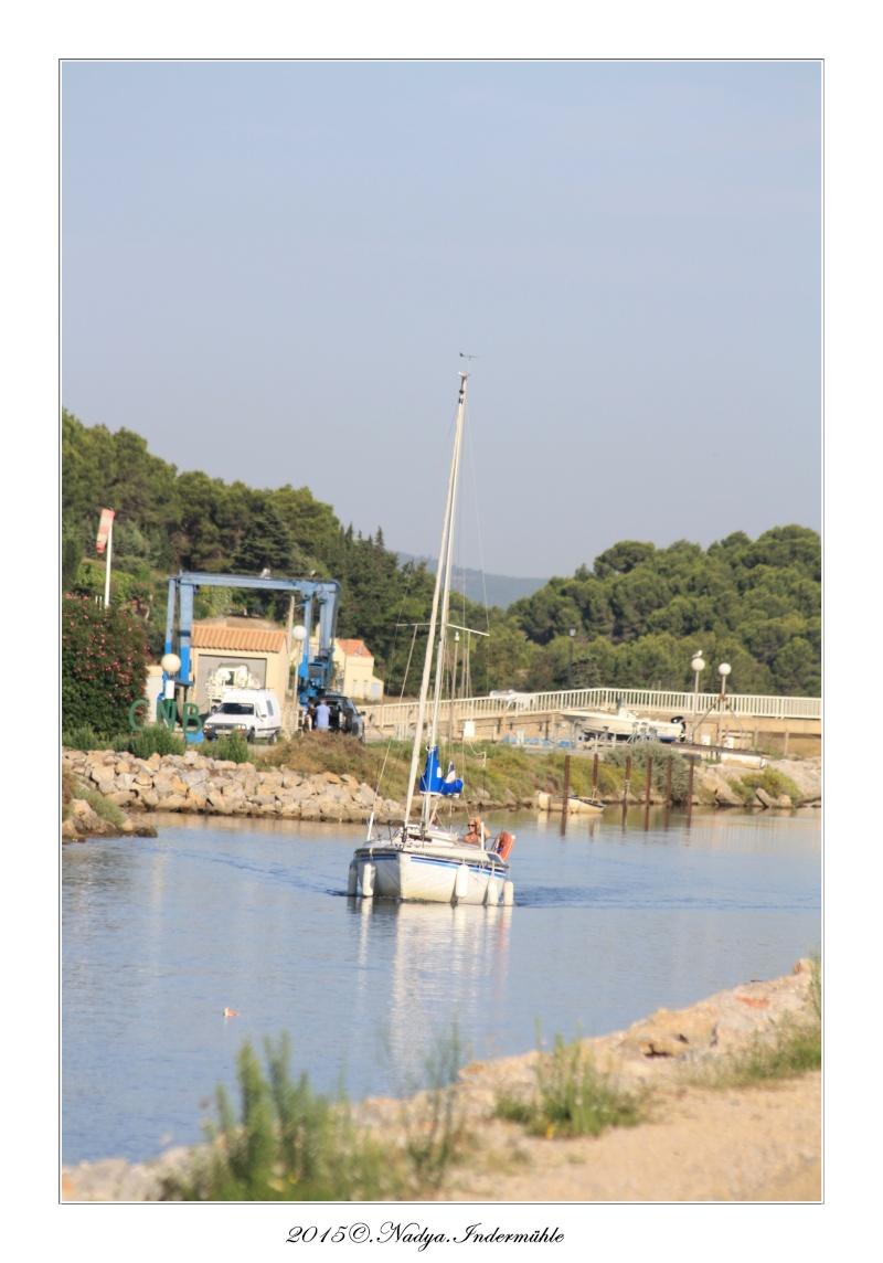 Gruissan et son port  Cadre119