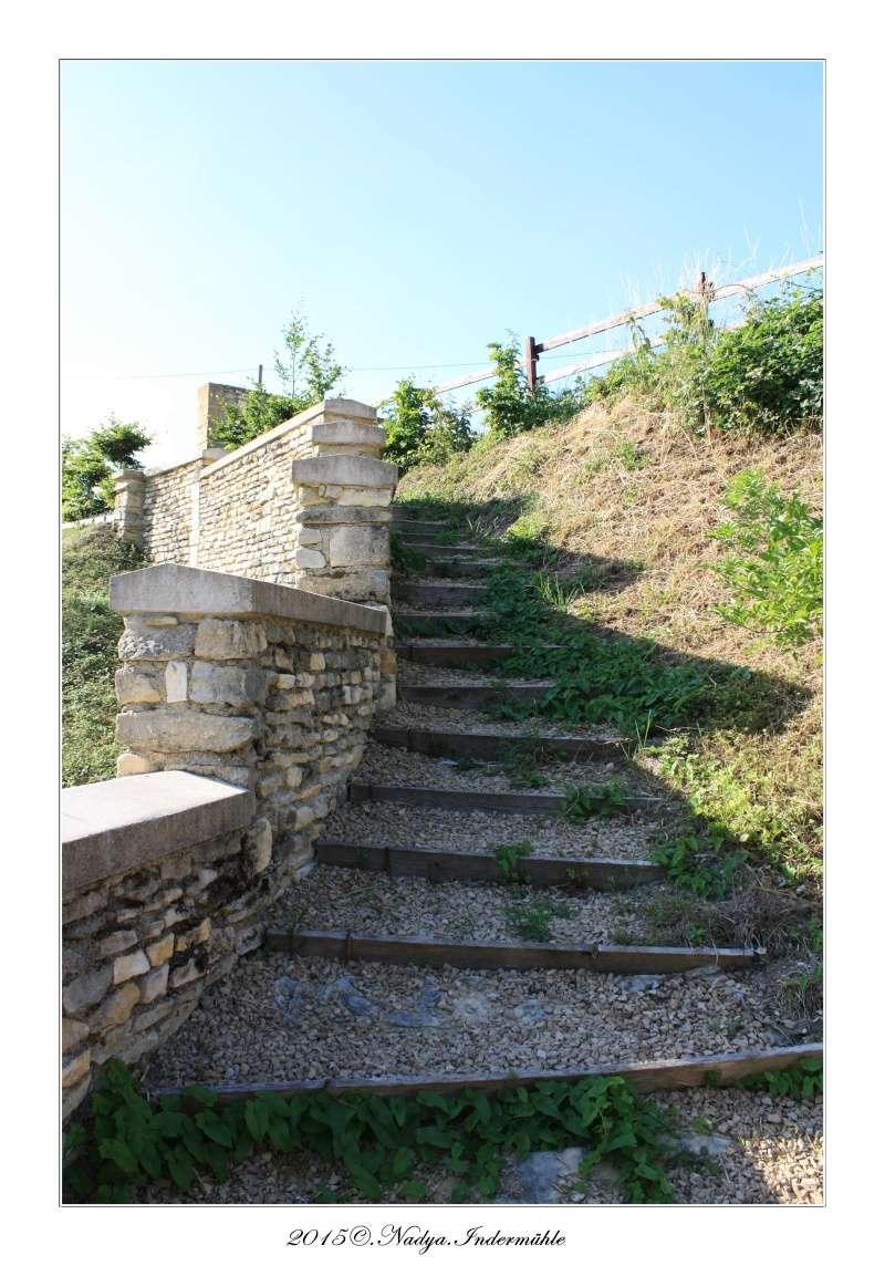 Charbogne, et son château (Ferme fortifiée de Charbogne) - Page 2 Cadrer59