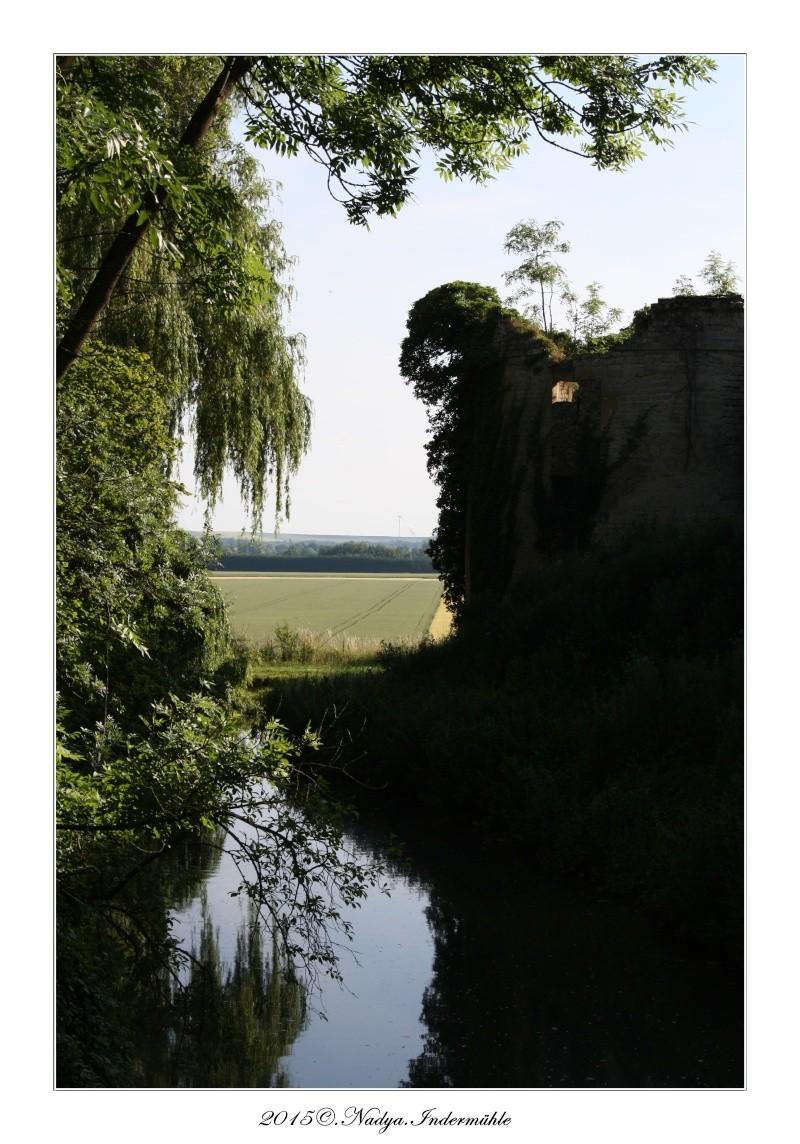 Charbogne, et son château (Ferme fortifiée de Charbogne) Cadrer91