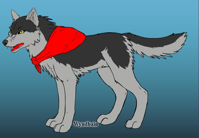 Create Your Wolf Here Rp_apa15