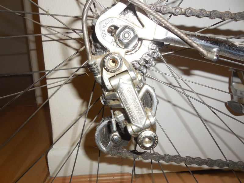 Pédigrée vélo Dscn2513