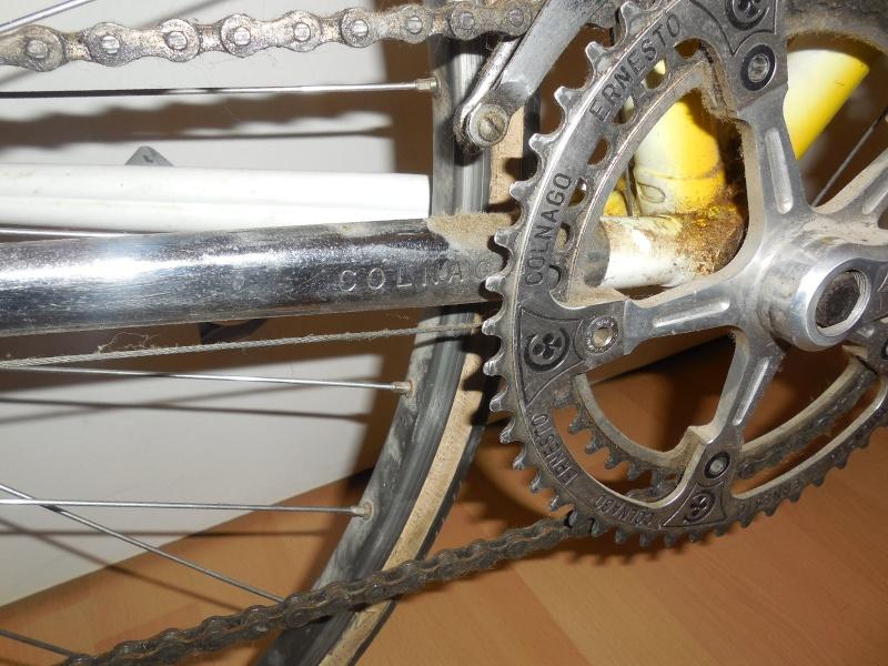 Pédigrée vélo Dscn2514