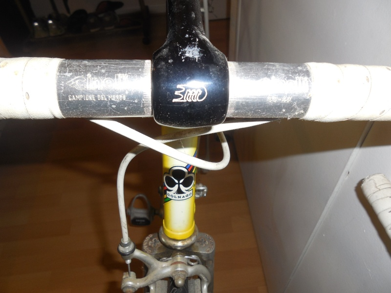 Pédigrée vélo Dscn2610