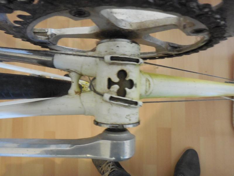 Pédigrée vélo Dscn2616