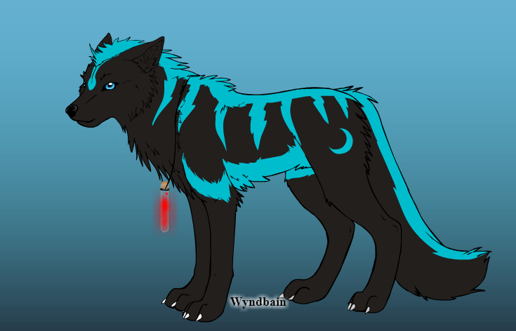 Create Your Wolf Here 15b45710