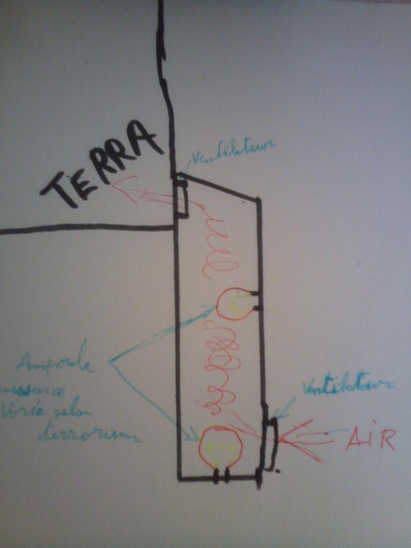 terrarium de mon futur pogona Cam00616