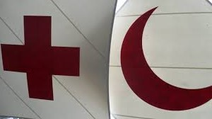Fòrum activitats Creu Roja Alt Penedes