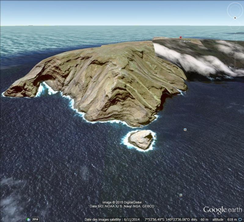 on dirait un bouda rigolo, Bird Island, Hatutu, Polynésie Française Hatutu10
