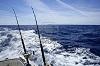 Pêche à la canne en bateau