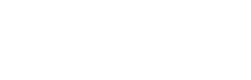 flotte ruche Achéron Logo1110