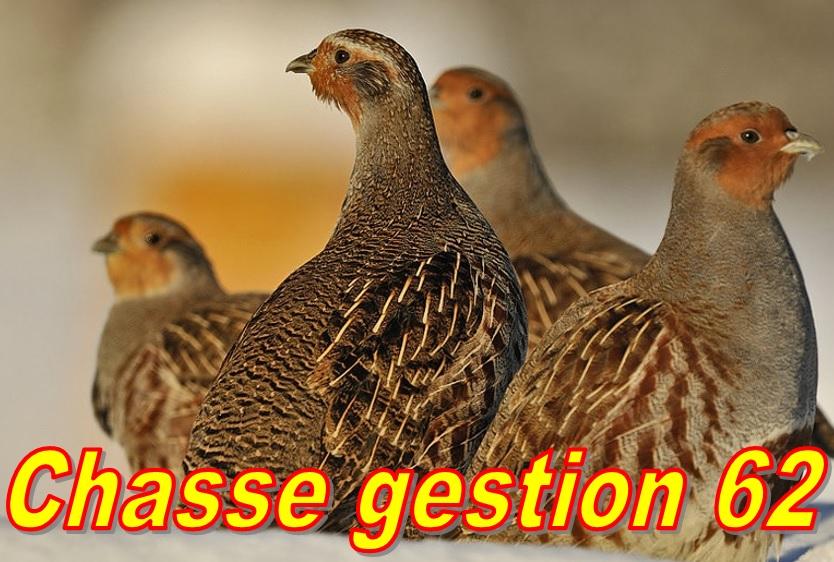 Gestion, Piégeage, Aménagements.