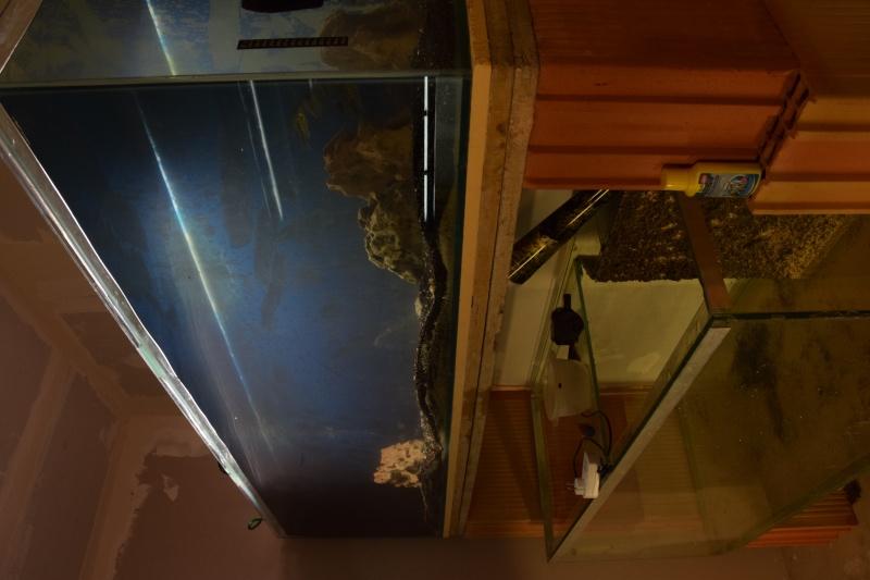 installation fishroom  Dsc_0210