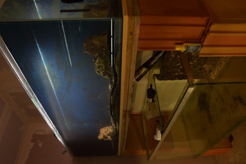 installation fishroom  Dsc_0212