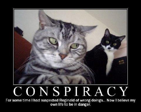 Ces complots avérés tellement abracadabran qu'on est obligé d'en rire d'absurdité - Page 3 Catcon10