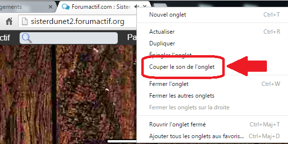 Couper le son du forum 2_coup10