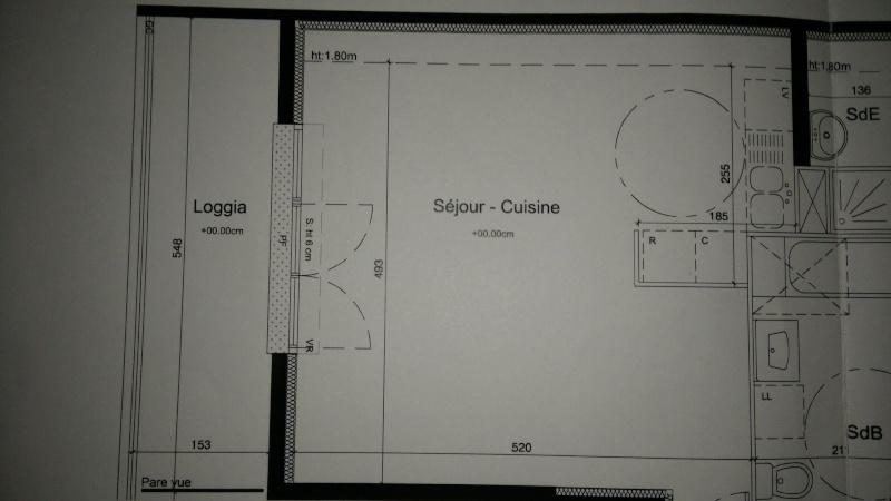 Besoin d'aide pour l'aménagement de l'espace salon-cuisine Img20122