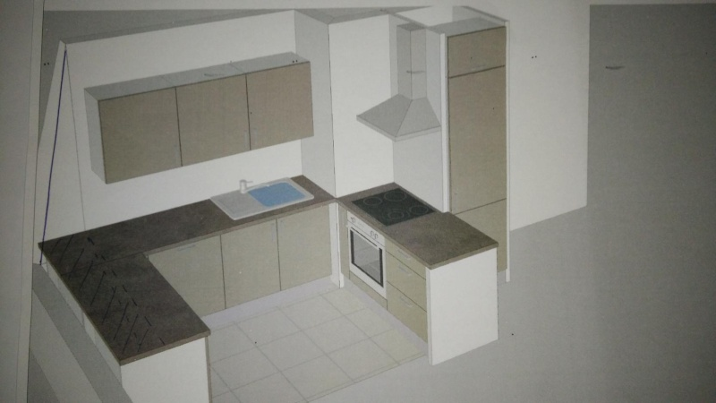 Besoin d'aide pour l'aménagement de l'espace salon-cuisine Img20123