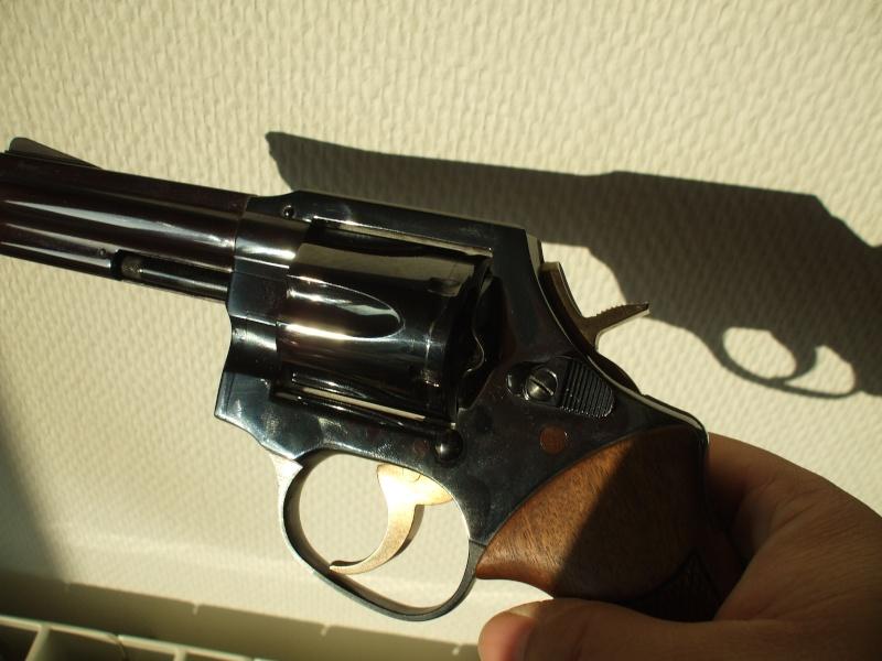 mon MR 73 police Dscf0310