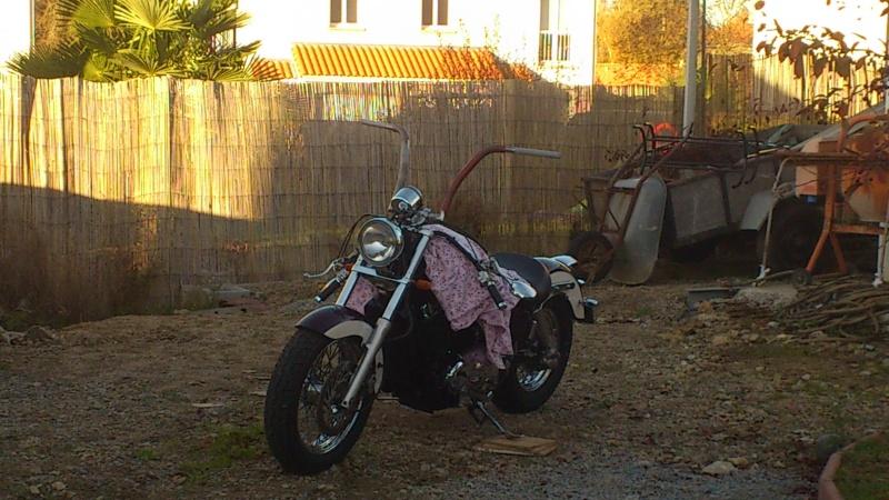 """concours photo Novembre  """"vos motos et de leurs personnalisation """" Dsc_0610"""