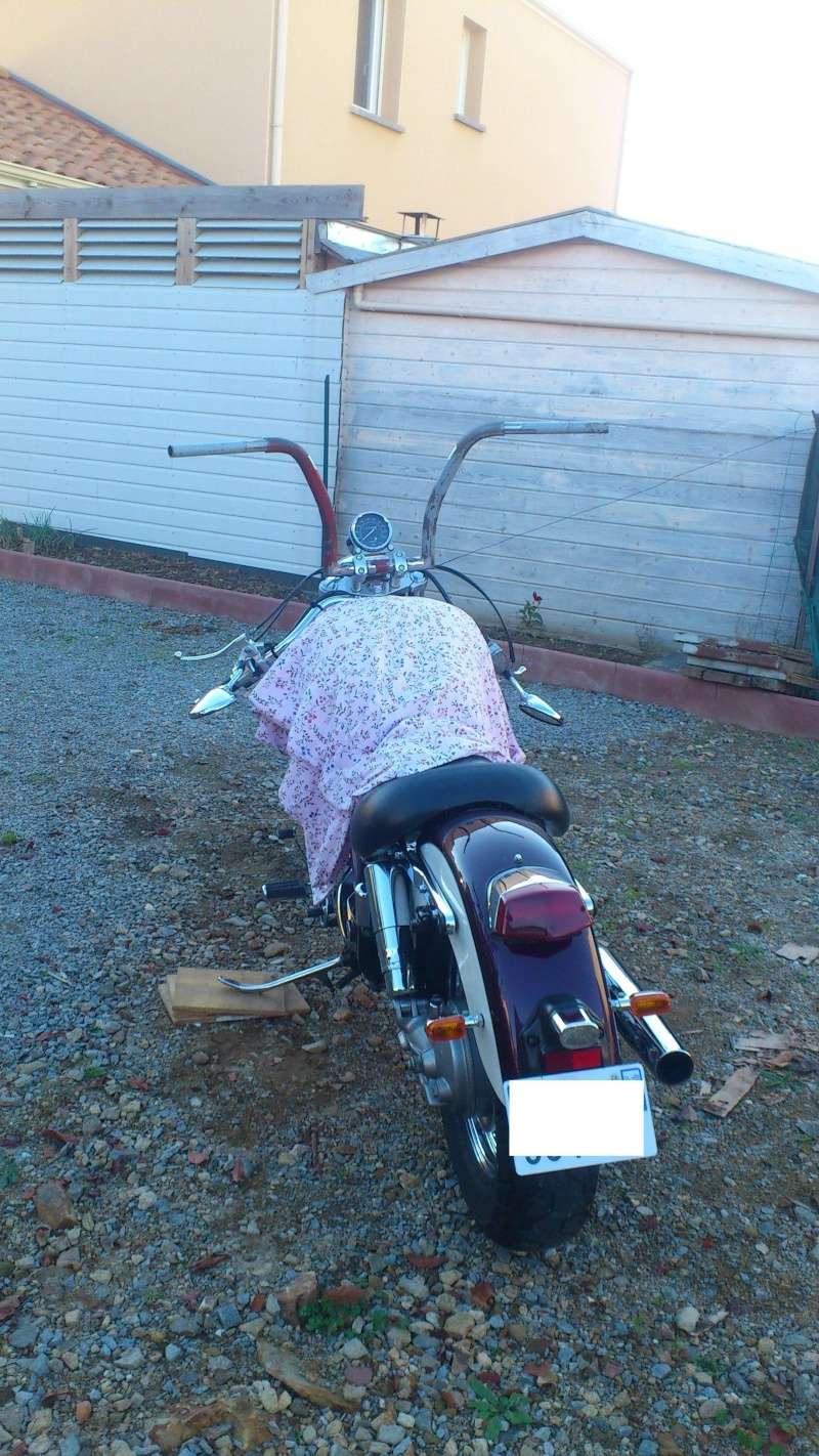 """concours photo Novembre  """"vos motos et de leurs personnalisation """" Dsc_0611"""