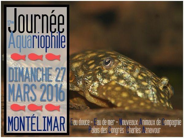 17ème bourse aux poissons à Montélimar (26) le 27.03.2016 Affich10