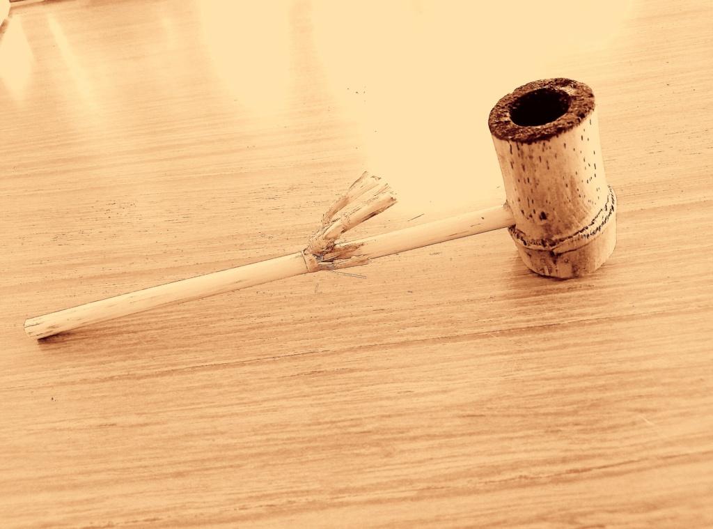Pipe de camargue  Img_2039