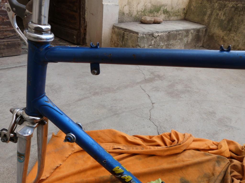 Montage sauvage P1060232