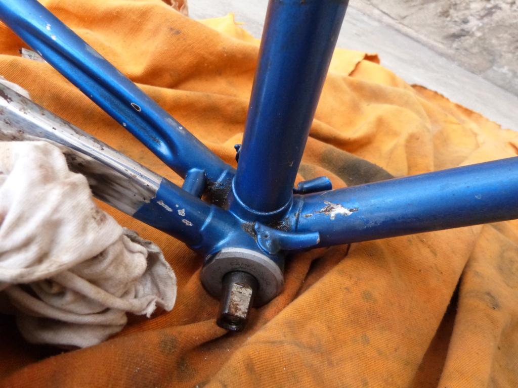 Montage sauvage P1060233