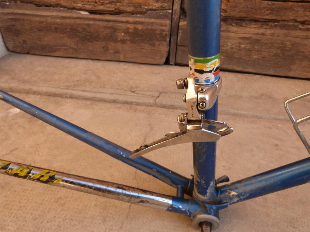 Montage sauvage P1060240
