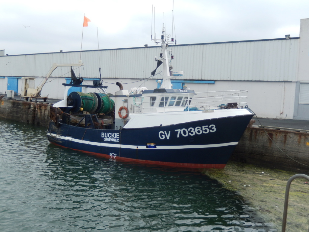 [VIE DES PORTS] Quelques bateaux de pêche (sur nos côtes Françaises) 01210