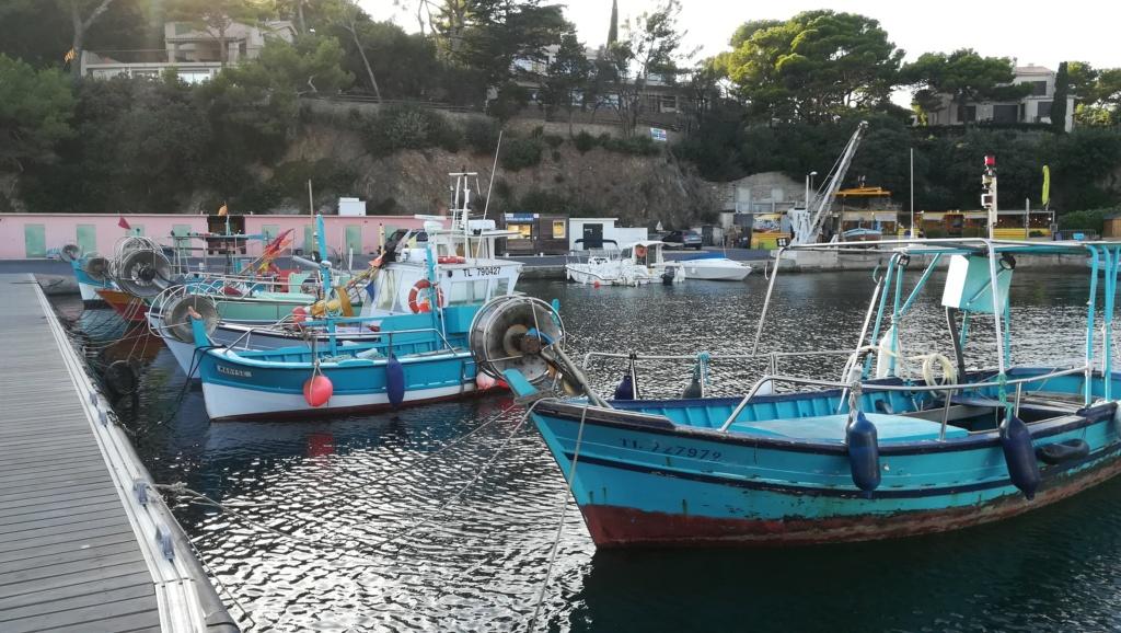[VIE DES PORTS] Quelques bateaux de pêche (sur nos côtes Françaises) 05211