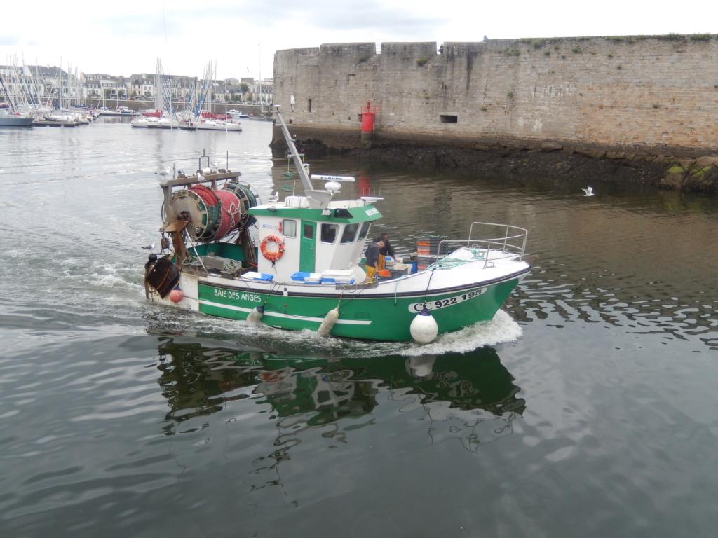 [VIE DES PORTS] Quelques bateaux de pêche (sur nos côtes Françaises) Dscn4914