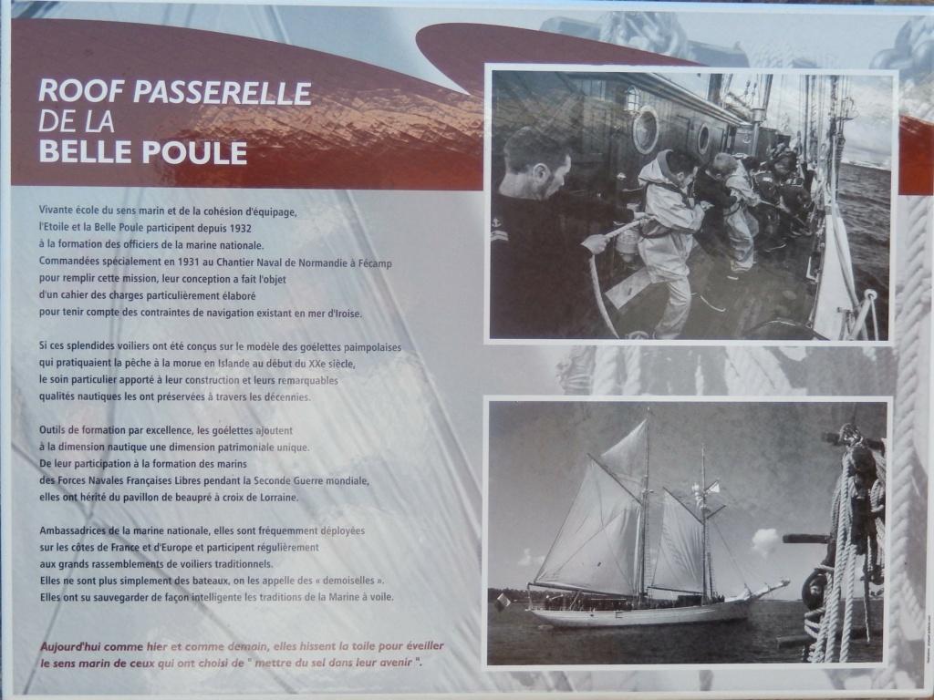 L'ÉTOILE ET LA BELLE-POULE (BE) - Page 29 Dscn7910