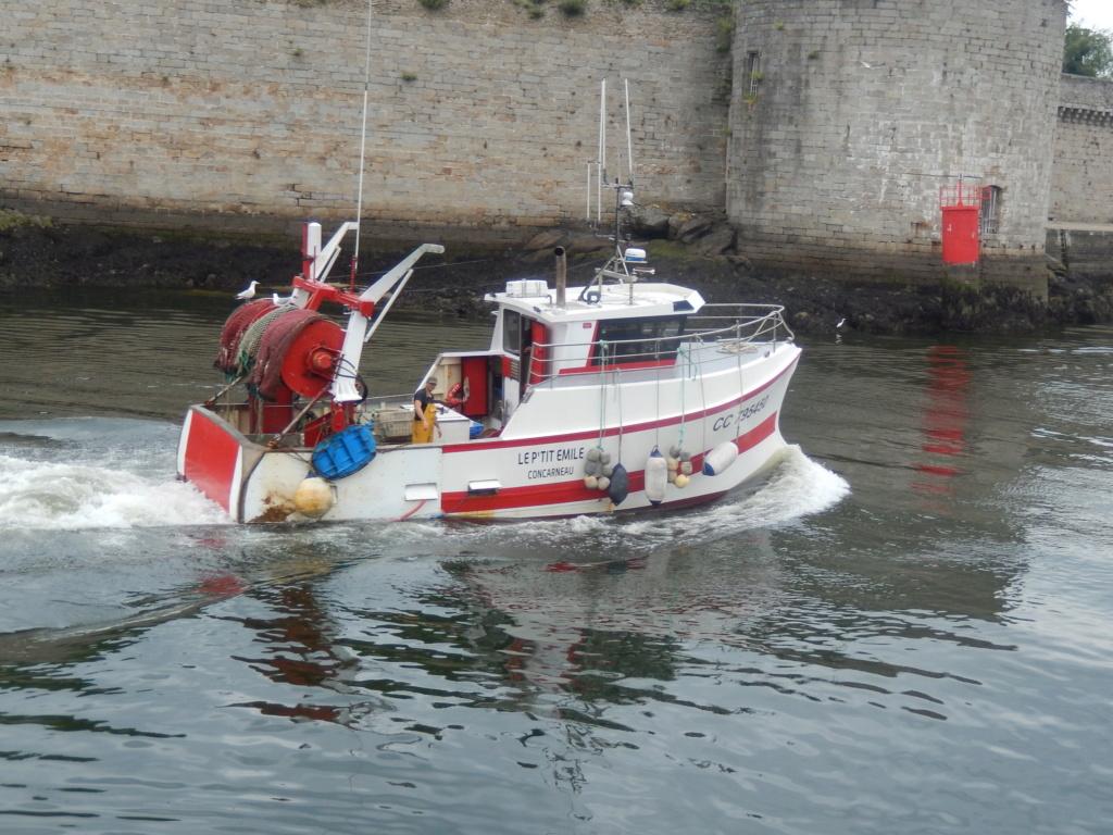[VIE DES PORTS] Quelques bateaux de pêche (sur nos côtes Françaises) Rscn4913