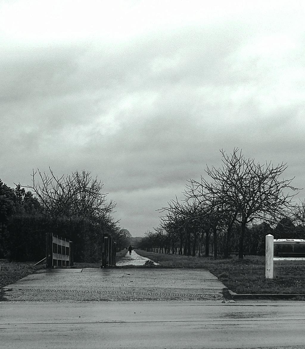 Solitude ... Dscf0210