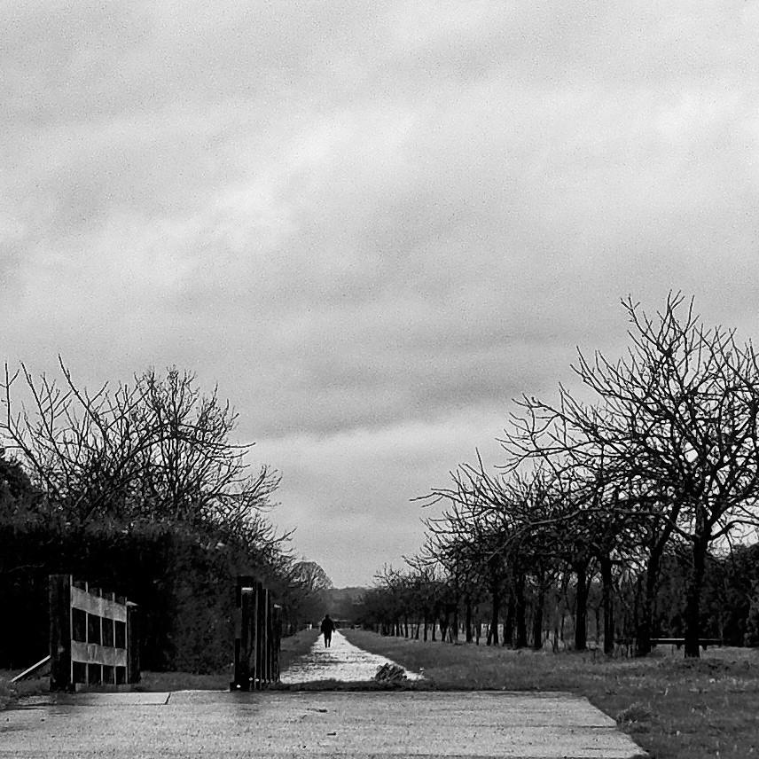 Solitude ... Dscf0211