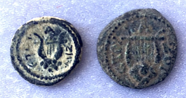 Référencement Monnaies Grecques ou Provinciales à la Lyre .. Img_7221