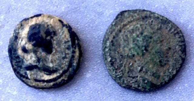 Référencement Monnaies Grecques ou Provinciales à la Lyre .. Img_7222