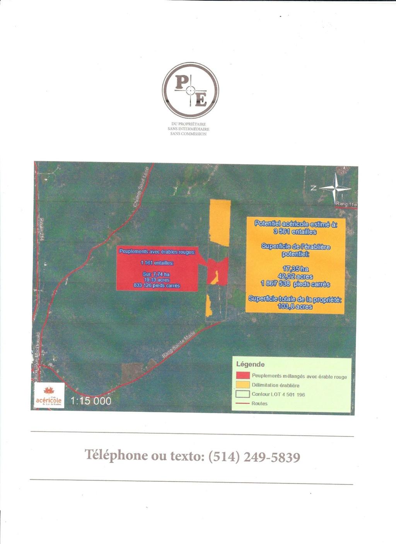 Lot a bois érablière a vendre en Estrie Milan210