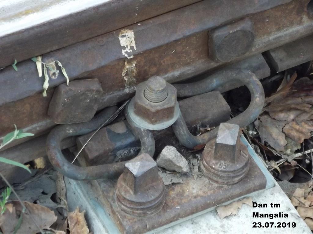 Mangalia - Pagina 2 Dscf4610