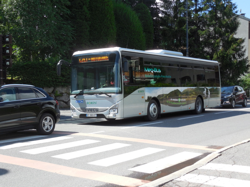 AUTOCARS BORINI Dscn4033